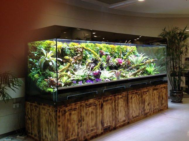 terrario e acquario se diventano anche accessori d 39 arredo